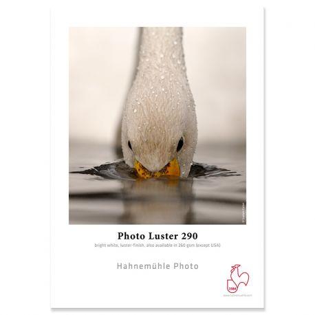 Photo Luster 290g - 17p