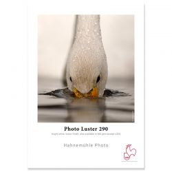 Photo Luster 290g - 24p