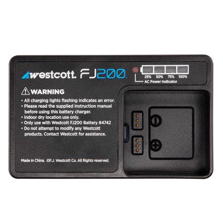 Chargeur batterie pour FJ200
