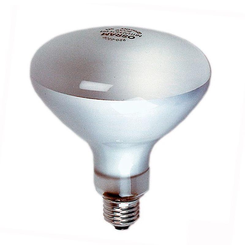Lampe Photoflood 500 W