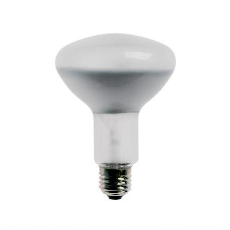 Lampe Photoflood 150 W